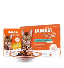 IAMS_Delights_Main_12Pack_Land_Collection_in_Gravy_Adult_Cats.png