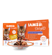 IAMS_Delights_Main_12Pack_Land_and_Sea_Collection_in_Gravy_Adult_Cats.png