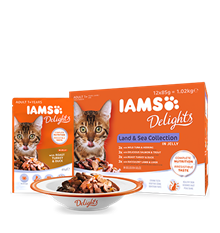 IAMS_Delights_Main_12Pack_Land_and_Sea_Collection_in_Jelly_Adult_Cats.png