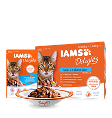 IAMS_Delights_Main_12Pack_Sea_Collection_in_Jelly_Adult_Cats.png